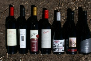 Nuriootpa Wine Trail wine bottle lineup