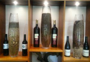 Elderton Barossa Cellar Door soil profiles
