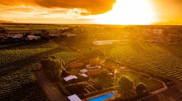 Elderton Wines Barossa Valley Winery and vineyards