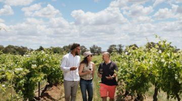 Elderton Wines Barossa Wine Tasting luxury experience
