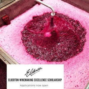Elderton Winery Barossa - Winemaking Excellence Scholarship