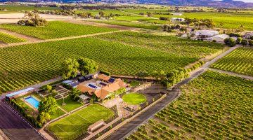 Elderton Barossa Winery Tour