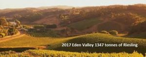 Eden Valley Riesling pic