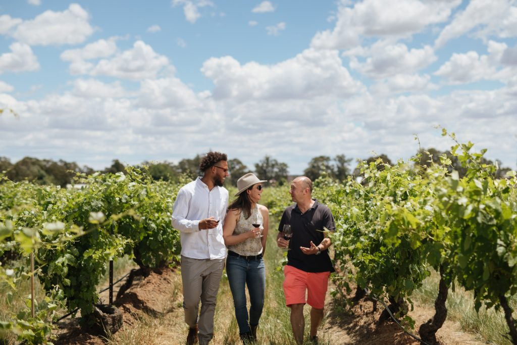 Elderton Barossa Best Winery Tourism