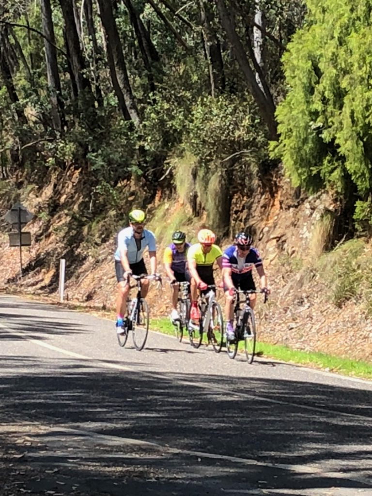 Barossa winemakers riding in Bright