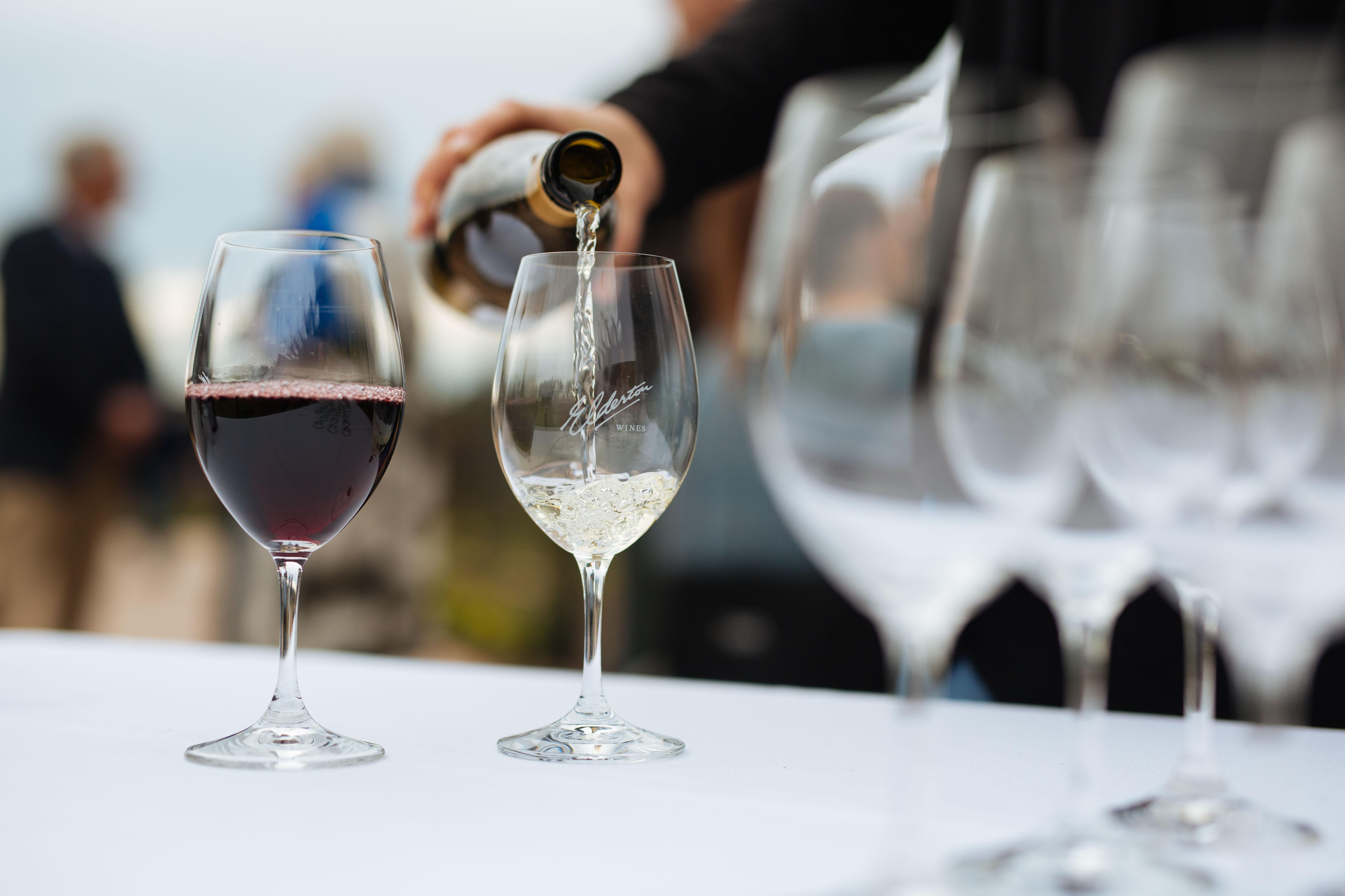 Wine Serving Temperature