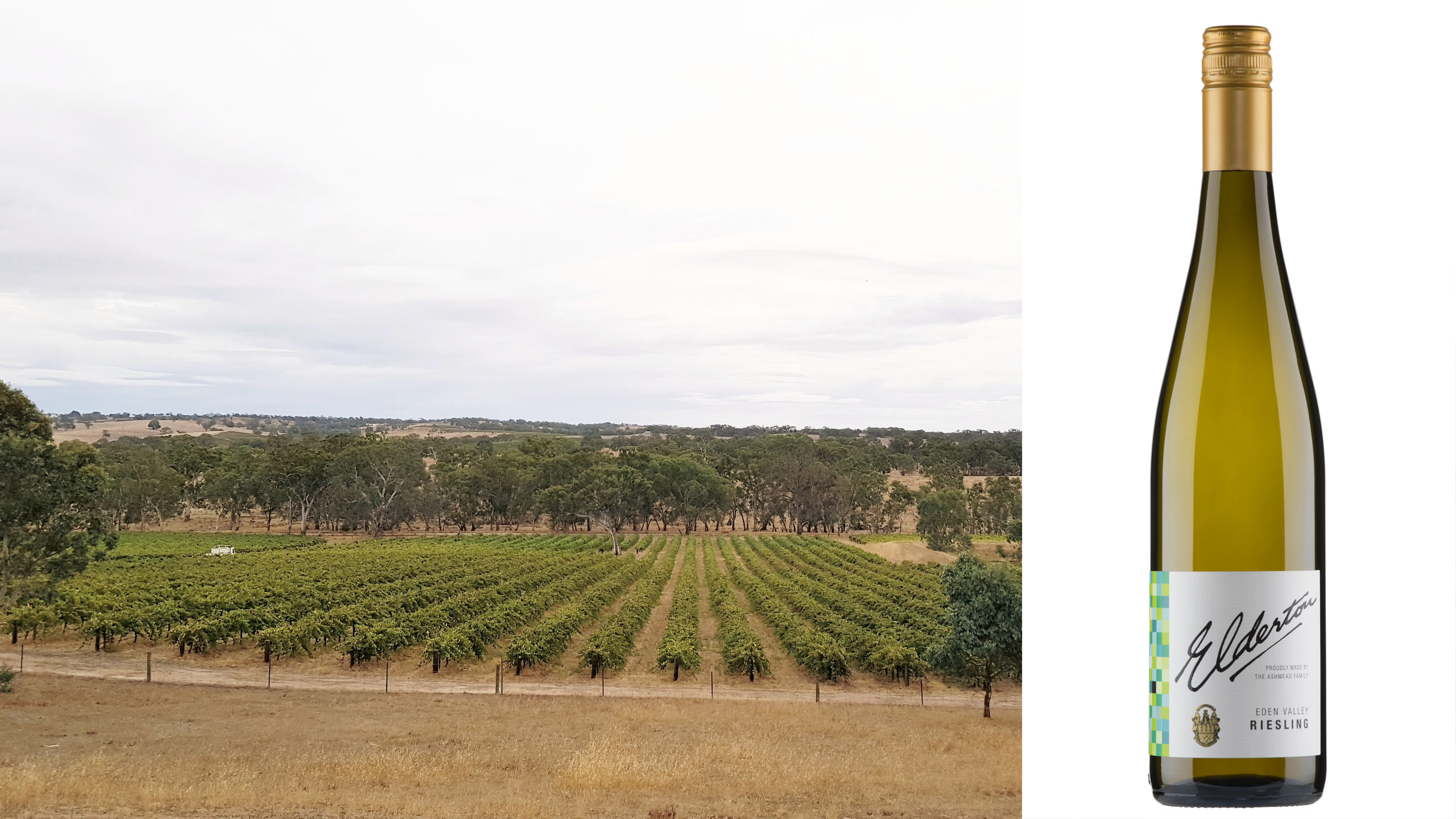 Eden Valley Riesling vineyard